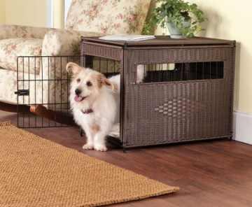 Crate training a dog overnight